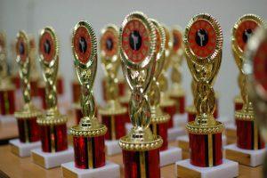 Annual Interclub Karate Event